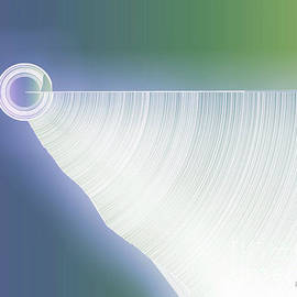 Palas Kumar Ray - Moon beam
