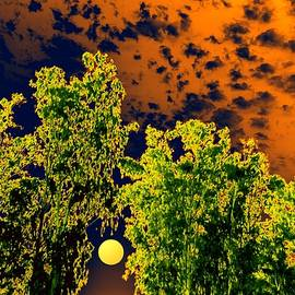 Bliss Of Art - Moon Between Greens