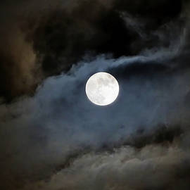 Theresa Campbell - Moon in the Clouds Windsor IL