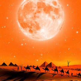 Dhouib Skander - Moon in the deert 1