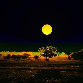 Bliss Of Art - Moon Lit Nature