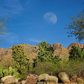 Mark Myhaver - Moon Over Pusch Ridge h32