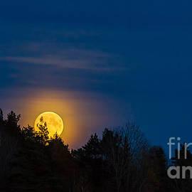 Torbjorn Swenelius - Moon rise