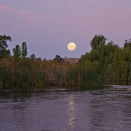 David Watson - Moon River