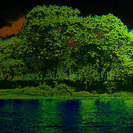 Bliss Of Art - Moon Trees and Water