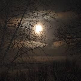 Linda Benoit - Moonglow