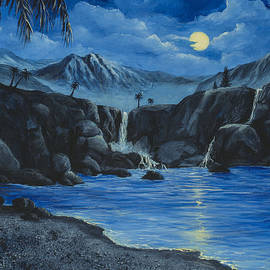 Darice Machel McGuire - Moonlight and Waterfalls