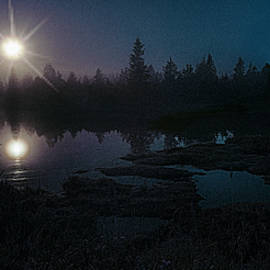 Marty Saccone - Moonlit Wetland