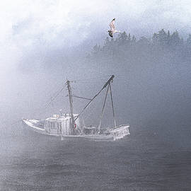 Marty Saccone - Moored in Blustery Sea Smoke