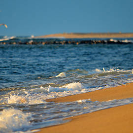 Dianne Cowen - Morning by the Sea
