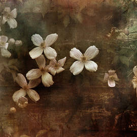 Dominic Moriarty - Morning.