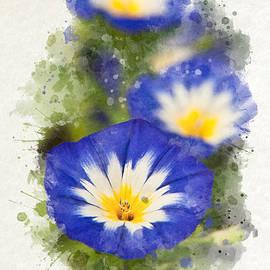 Christina Rollo - Morning Glory Watercolor Art