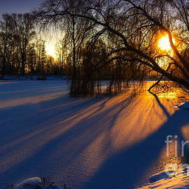 Franziskus Pfleghart - Morning Light