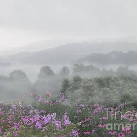 Mariarosa Rockefeller - Morning Mist