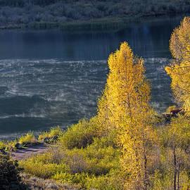 Alana Thrower - Morning Mist on Beaver Lake