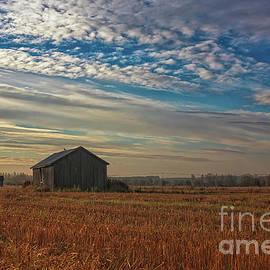 Morning On The Autumn Fields