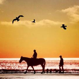 Josephine Johns - Morning Ride #sunset #camber Sands