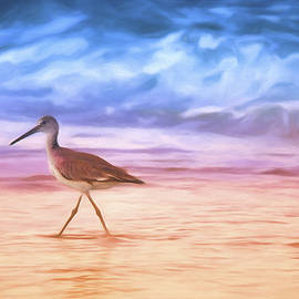 Daphne Sampson - Morning Sandpiper