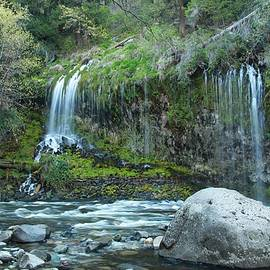 Laura Jean  - Mossbrae Falls II
