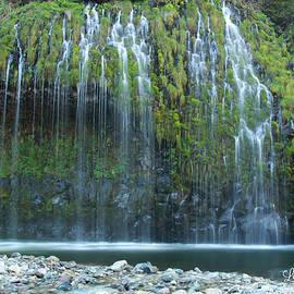 Laura Jean  - Mossbrae Falls
