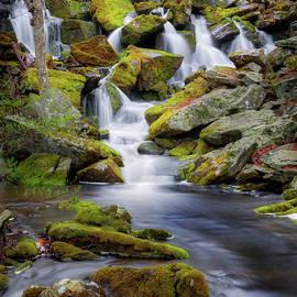 Bill Wakeley - Mossy Rocks Falls Portrait