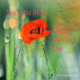 Beverly Guilliams - Mothers Day