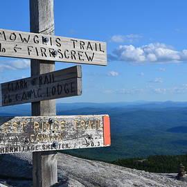 Colleen Phaedra - Mount Cardigan Summit