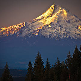 Ed Book - Mount Hood from the north