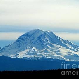 Judyann Matthews - Mount Rainier Spring