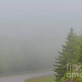 Thomas R Fletcher - Mountain Laurel Highway in Mist