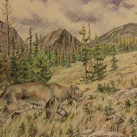 Keith Thompson - Mountain Lion on the Hunt