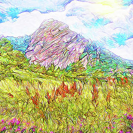 Joel Bruce Wallach - Mountain Meadow Wildflowers - Boulder Colorado Park