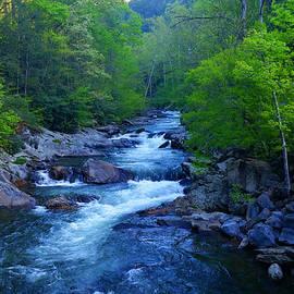 Michael Rucker - Mountain Stream
