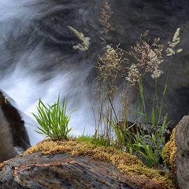 Guido Montanes Castillo - Mountain water Summer