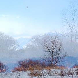 Gretchen Wrede - Mountains and Trees Awaken to Blue Misty Morn