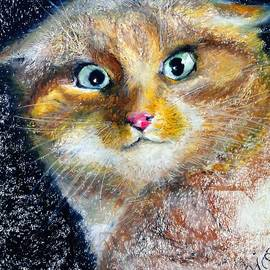 Larissa Pirogovski - Mr. Chairman Meow