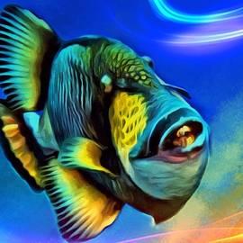 Scott Wallace - Mr Triggerfish
