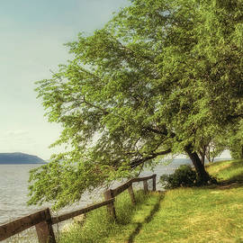 Marianne Campolongo - Mulberry on the Hudson Vintage