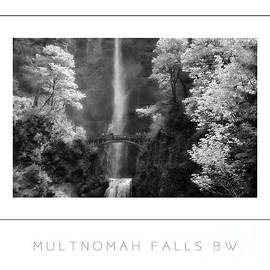 Mike Nellums - Multnomah Falls BW poster