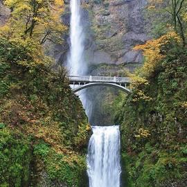 Bruce Bley - Multnomah Falls in the Autumn
