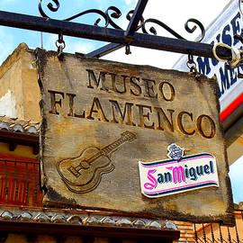 Alan Armstrong - # 46 Flamenco Museum Sign