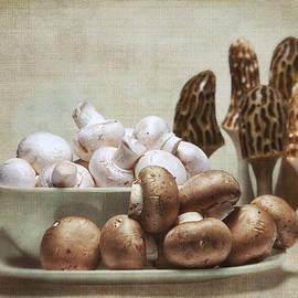 Tom Mc Nemar - Mushrooms and Carvings