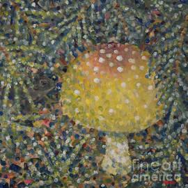 Jim Rehlin - Mushrooms / Frog