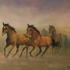 Sean Conlon - Mustang Freedom