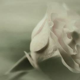 The Art Of Marilyn Ridoutt-Greene - My Eternal