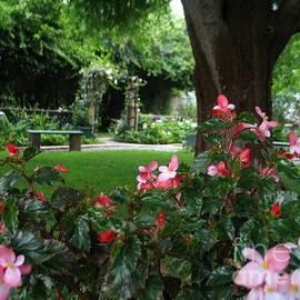 Hazel Holland - My English Garden 2
