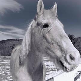 Mim White - My Heart