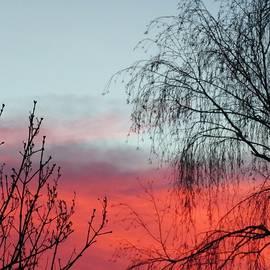 Vesna Martinjak - My sky