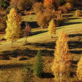 Serhii Kucher - Mystery Autumn