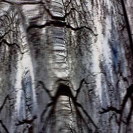 Alexander Vinogradov - Mystery of Forest.